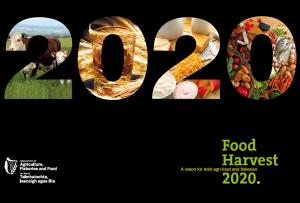 Food Harvest 2020
